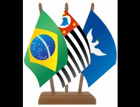 Brasil + Estado + Capital