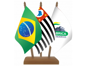 Brasil + Estado + Personalizada